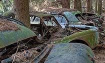 無聲腐爛的二戰軍車墳墓