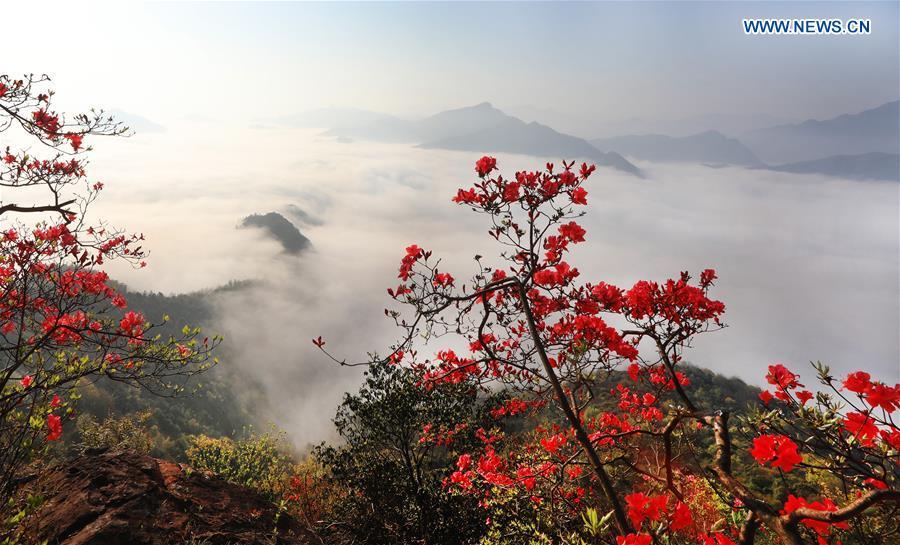 #CHINA-ANHUI-MOUNTAIN SCENERY (CN*)