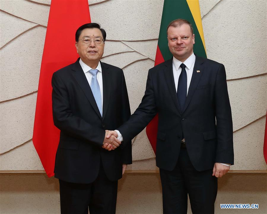Zhang Dejiang (L), chairman of the Standing Committee of China's National People's Congress, meets with Lithuanian Prime Minister Saulius Skvernelis in Vilnius, capital of Lithuania, April 14, 2017. Zhang paid an official goodwill visit to Lithuania on April 14-16. (Xinhua/Liu Weibing)<br/>