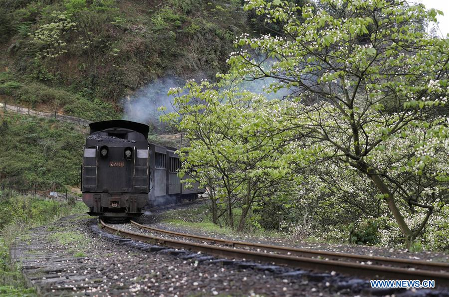 A narrow gauge train runs in Qianwei County of southwest China's Sichuan Province, April 17, 2017. With a history of about 50 years and features of manual control, the Jiayang narrow gauge train in Qianwei County was enlisted as an industrial heritage by local government since April, 2006. (Xinhua/Jiang Hongjing)<br/>