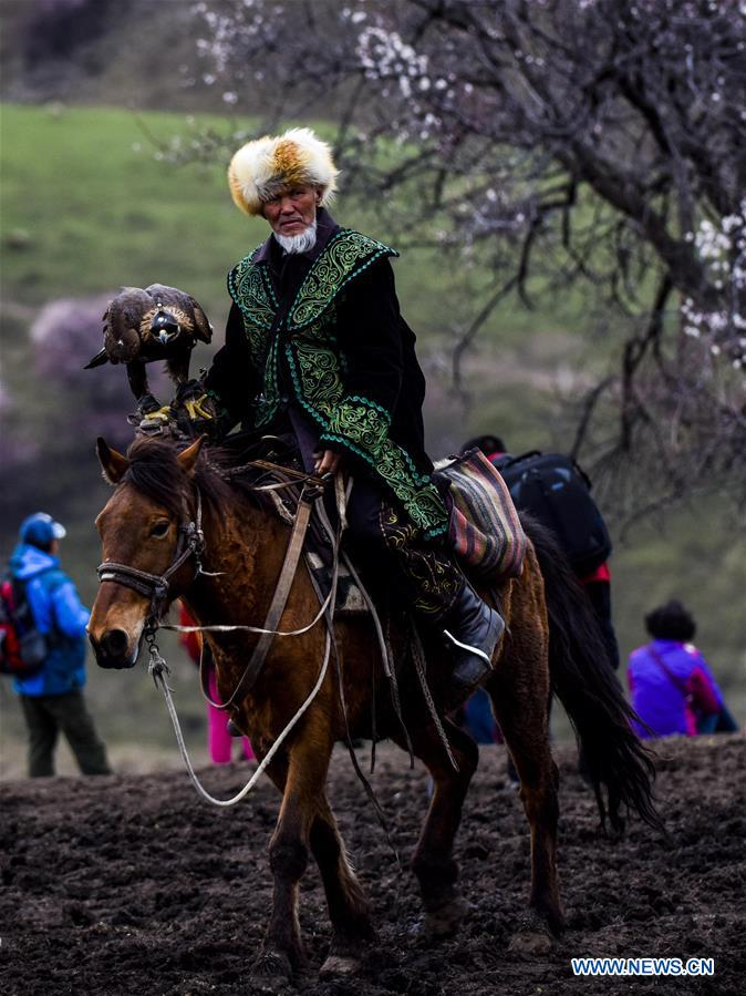 An old man in traditional costume rides on a horse in &quot;Apricot Valley&quot; in Xinyuan County, northwest China's Xinjiang Uygur Autonomous Region, April 16, 2017. Apricots in &quot;Apricot Valley&quot; are in full bloom recently, attracting tourists to come. (Xinhua/Zhao Ge)<br/>