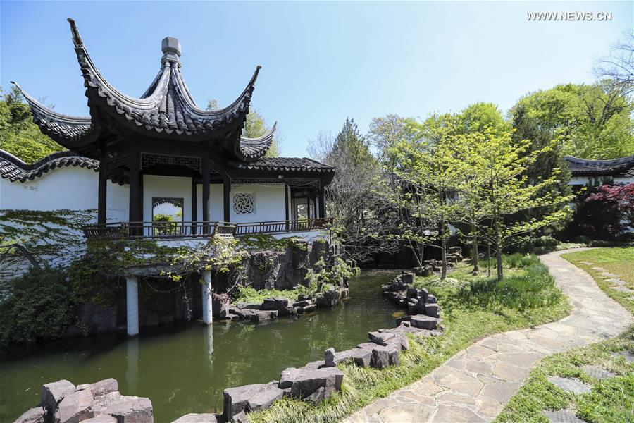 scenery of chinese scholar 39 s garden at snug harbor on staten island in new york xinhua