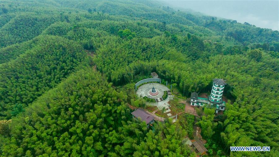 Aerial photo taken on May 10, 2017 shows the Chishui Bamboo Forest Park in southwest China's Guizhou Province. (Xinhua/Ou Dongqu)