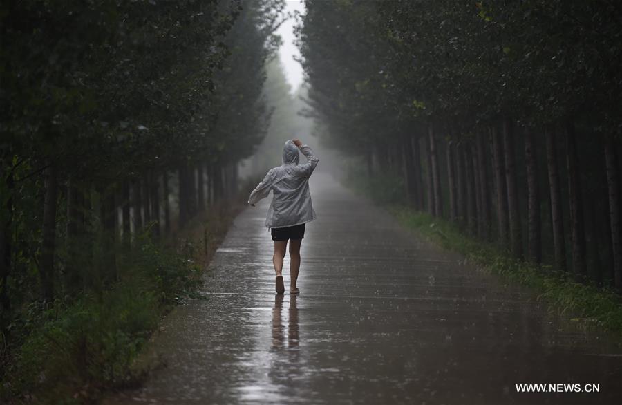 CHINA-BEIJING-RAINFALL (CN)