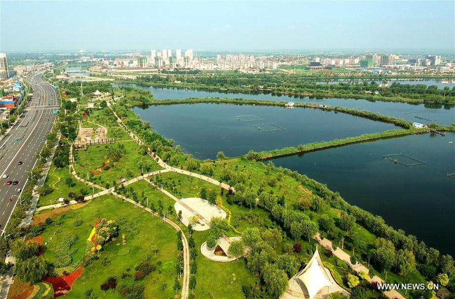 Aerial photo taken on Aug. 9, 2017 shows the scenery of the Lakeside Park in Jizhou District of Hengshui City, north China's Hebei Province. The local government took a lot of measures to improve the local environment and converted the once saline and alkaline land into an ecological park with the total green area reaching 1.29 million square meters. (Xinhua/Mu Yu)<br/>