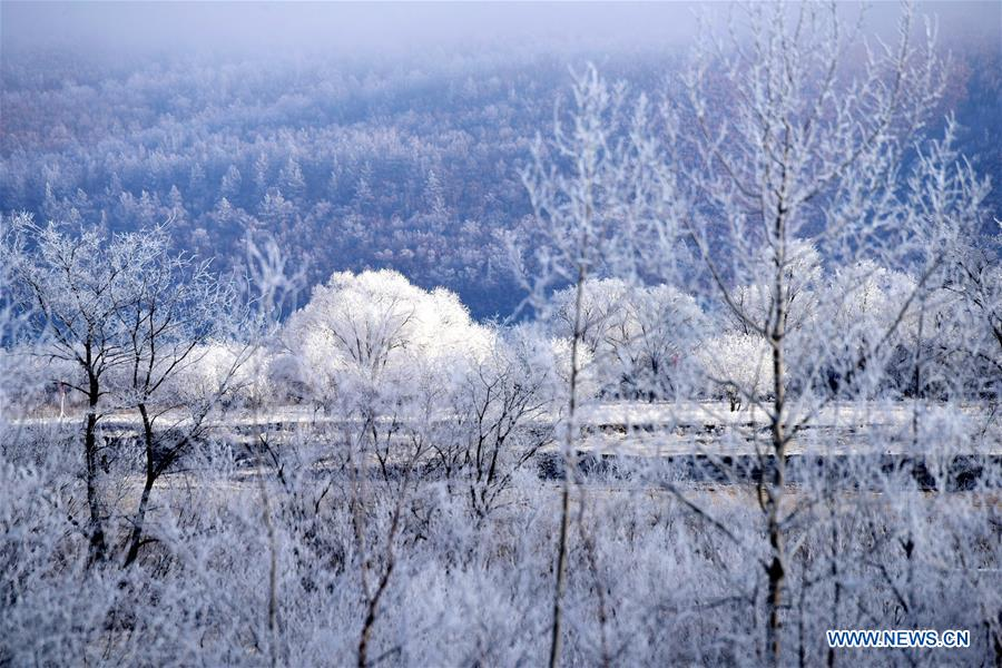 <br/>Photo taken on Nov. 6, 2017 shows the rime scenery at the Huma section of the Heilongjiang River in northeast China's Heilongjiang Province. (Xinhua/Zhou Changping)<br/>