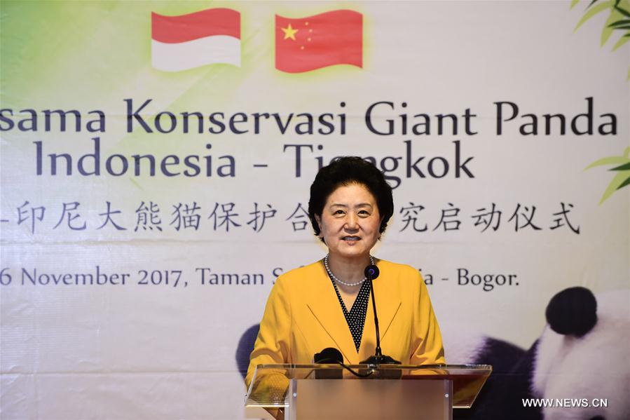 Visiting Chinese Vice Premier Liu Yandong speaks during the inauguration ceremony of the China-Indonesia Giant Pandas Conservation Partnership Program in a zoo at Bogor, Indonesia, Nov. 26, 2017. Image: Xinhua/Du Yu