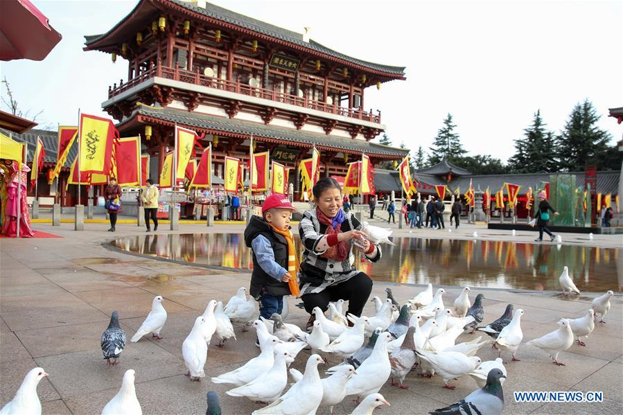 People play with pigeons in Tang Paradise, a park in Xi'an, capital of northwest China's Shaanxi Province, Nov. 22, 2017. The Xi'an-Chengdu high-speed railway, China's first rail route to run through the Qinling Mountains, is scheduled to enter operation within the year. By then, several ancient cities and tourist attractions will be connected by the railway. (Xinhua/Zhang Cheng)<br/>
