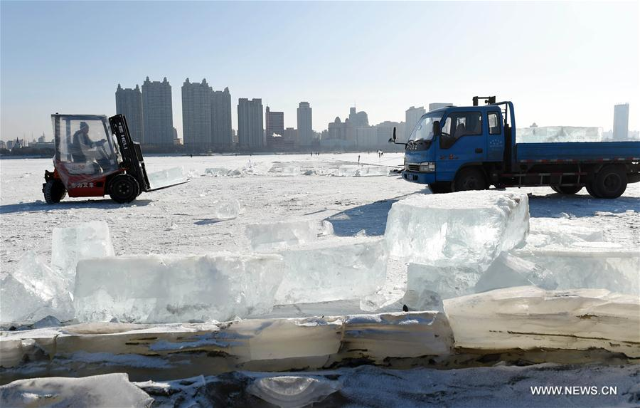 CHINA-HEILONGJIANG-HARBIN-ICE COLLECTION (CN)