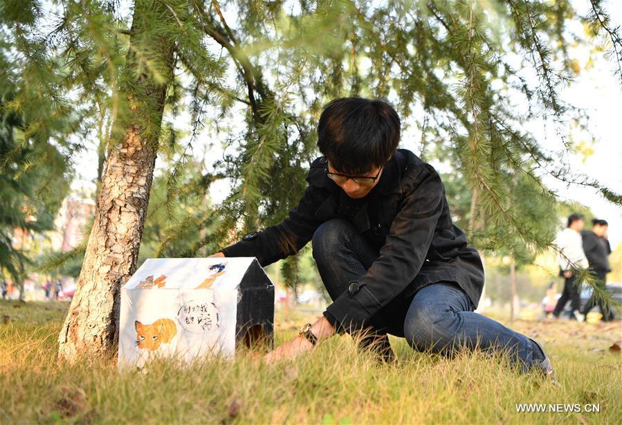 CHINA-CHANGSHA-STRAY ANIMALS-SHELTERS(CN)
