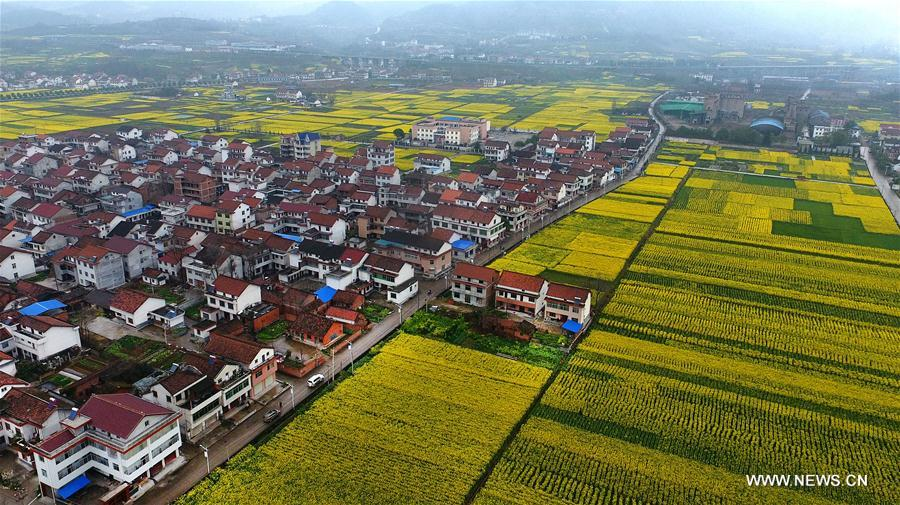 Photo taken on March 19, 2017 shows the scenery in Tiandang Mountain in Mianxian County, northwest China's Shaanxi Province. (Xinhua/Tao Ming)<br/>