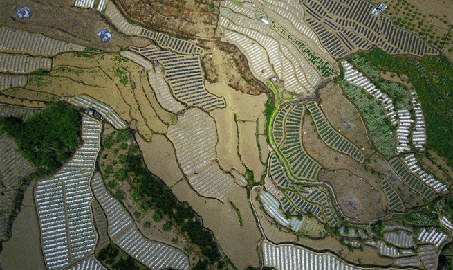 Aerial photos of farmland in SW China's township