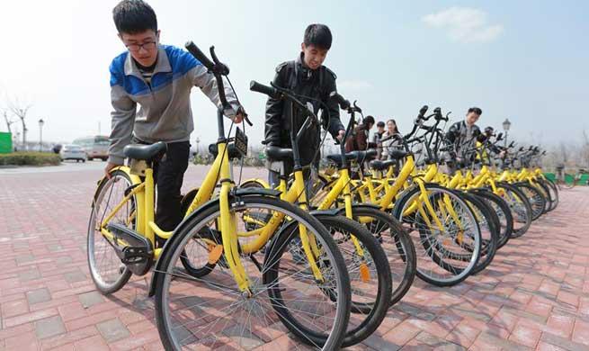 China's cities start to regulate bike sharing services