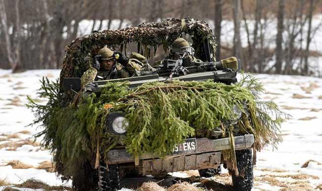 Estonian soldiers participate in military exercise in Sonda