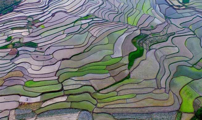 Rural scenery of terraced fields across China