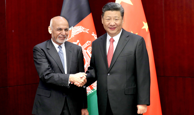 China, Afghanistan pledge closer cooperation on B&R construction