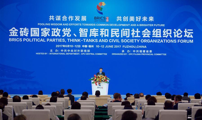 BRICS political parties, think tanks, non-governmental organizations to cement cooperation