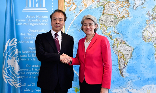 Xinhua editor-in-chief meets UNESCO Director-General