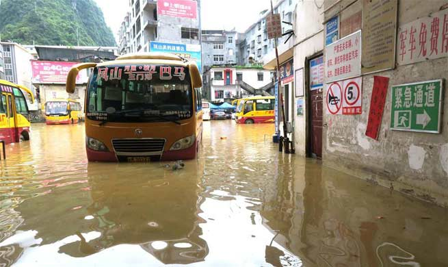 Torrential rain hits south China's county, causing flood