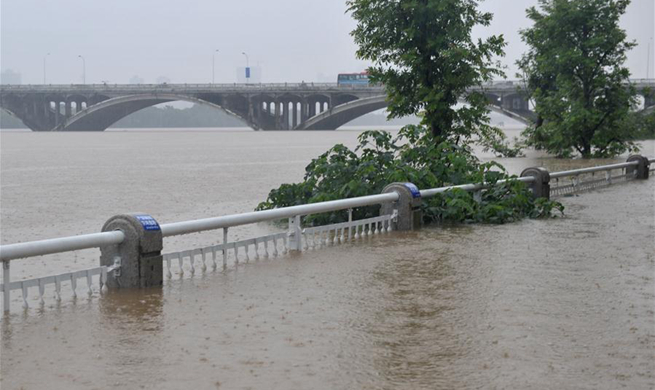 Water level of major river exceeds alarm level in China's Changsha