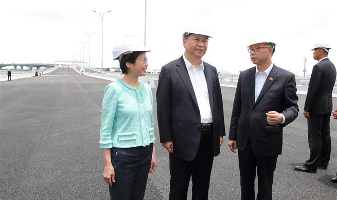 Xi inspects key infrastructure projects in HK