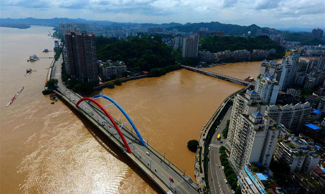 Water level of Xijiang River reaches 23.10 meters in China's Guangxi