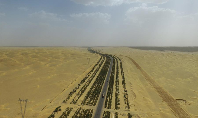 Shelter forest protects desert highway from intrusion of sand in Xinjiang