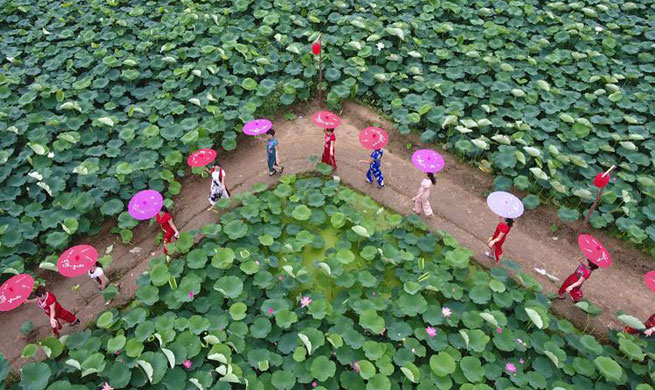 Tourists view lotus flowers in N China