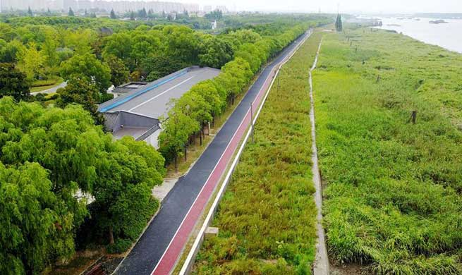Pujiang Country Park in Shanghai opens to public for trial run