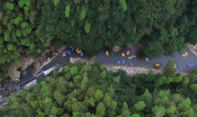 Tourists enjoy summer leisure at Anji County in E China