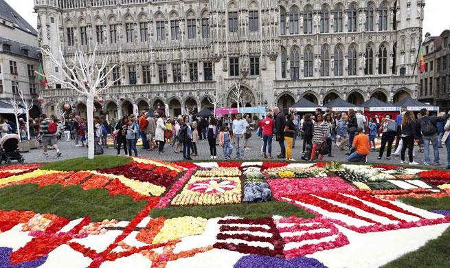 Floral exhibition Flowertime 2017 held in Belgium