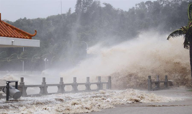 Typhoon Hato makes landfall in south China