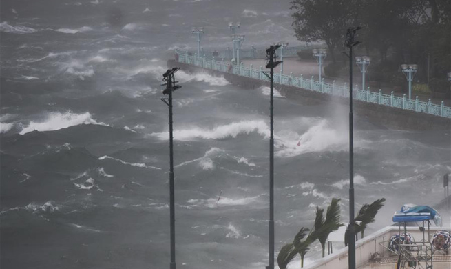 Typhoon Hato sweeps HK,tropical cyclone warning issued