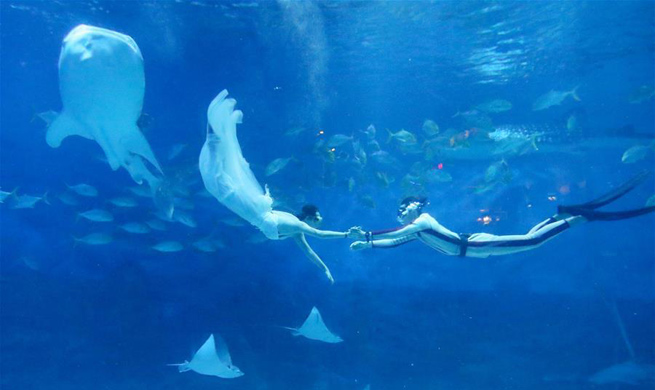 Underwater wedding show greets Qixi festival in E China