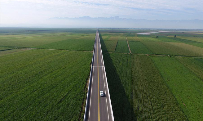 New highway along Yellow River opens to traffic