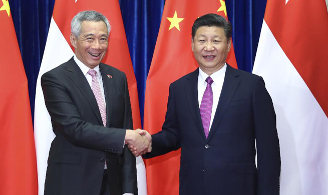 Xi meets Singaporean PM on advancing ties