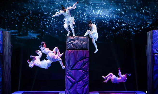 Highlights of 10th China Acrobatics Golden Chrysanthemum Awards