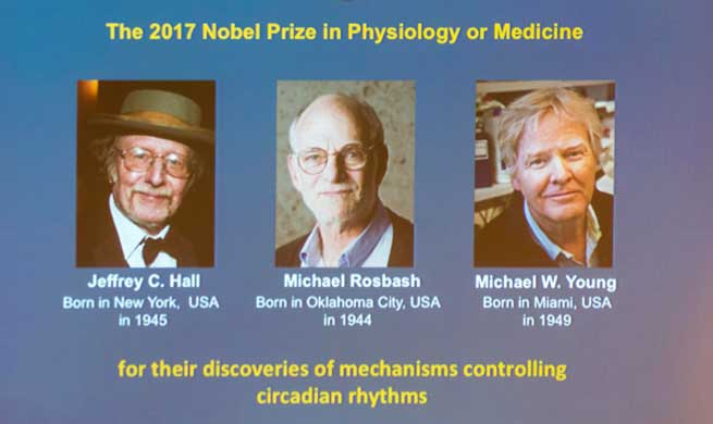 Three scientists share 2017 Nobel Prize in Physiology or Medicine