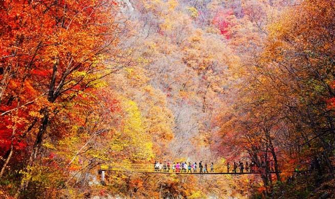 In pics: autumn scenery across China