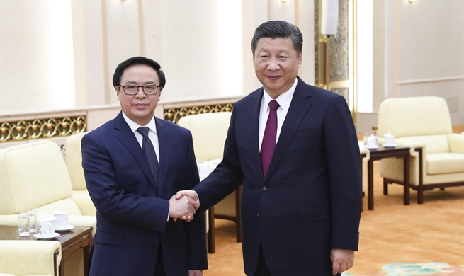Xi vows to promote healthy, stable development of China-Vietnam ties