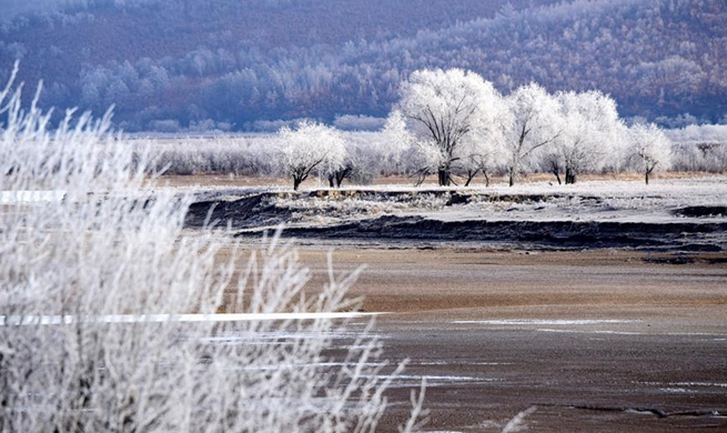 Rime scenery in northeast China's Heilongjiang