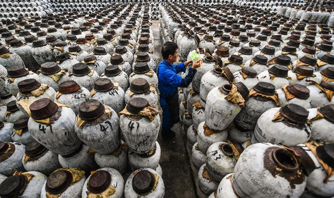 Brewing of rice wine begins in Shaoxing, China's Zhejiang