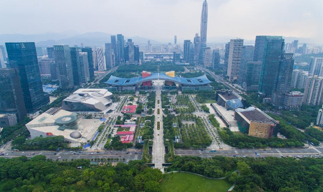 Shenzhen shows vitality as China's vast metropolis