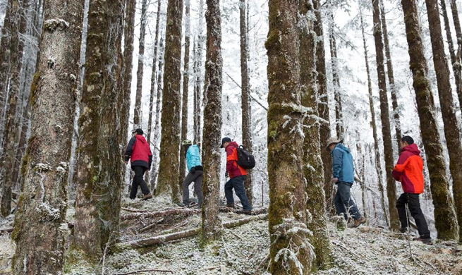 Pic story: scientific bases in SW China's Gongga Mountain