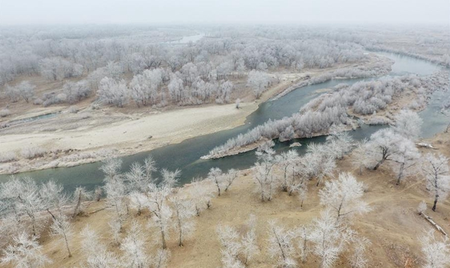 Rime scenery in Beitun, China's Xinjiang