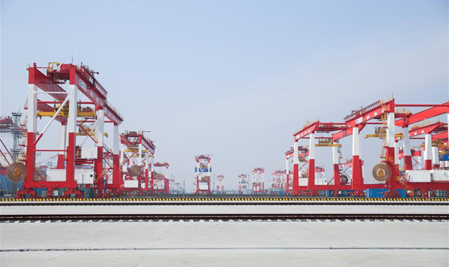 World's largest automated container terminal opens in Shanghai