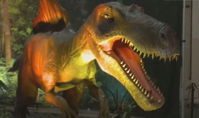"Video: Secret behind the ""rebirth"" of dinosaurs"