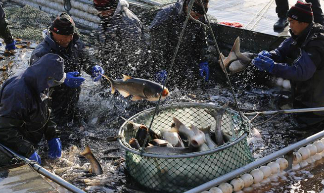 Winter fishing seen in E China's Shandong