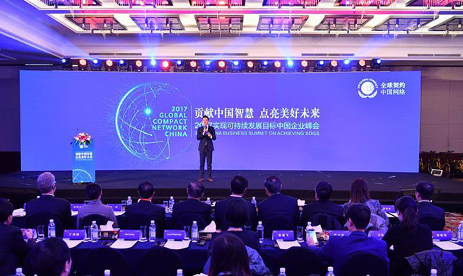 China Business Summit On Achieving Sustainable Development Goals held