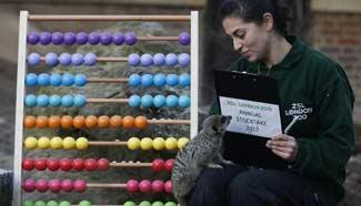 In pics: ZSL London Zoo in Britain